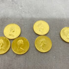 メイプルコイン